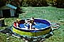 Lawn, Backyard Swimming Pool, Water, Doghouse, 1950's, SWFV02P09_12