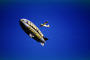 Goodyear Blimp, Airplane Towing a Banner, Advertising, TADV01P05_18