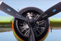 Radial Piston Engine, N442DF, Grumman S-2TA, Tanker-94, Firefighting Airtanker