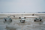 Spraying Deicing Fluid, N947SW, SkyWest, Bombardier CRJ-200ER, Cherry Picker, manlift, TAFD05_021