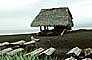 Thatched Hut, grass roof, beach, ocean, sand, Bali, Indonesia, building, Sod, TOEV01P10_15