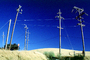 Altamont Pass, Transmission Lines, Powerline, Powerpole