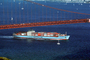 Maersk Line, Laust Maersk Line, IMO: 9190743, TSWV02P04_01