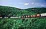 Canadian National Railways, CN, Boxcars, Forest, Mountain, Horseshoe Curve National Historic Landmark, Altoona, Allegheny Mountains, VRFV06P13_19