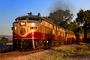 NVRR 73, MLW ALCO FPA4, Napa Valley Wine Train, Wine Train, Diesel Electric, Locomotive, Napa Valley Railroad, trainset, Sunset Glow